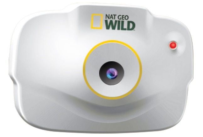 National Geographic Pet's Eye Camera