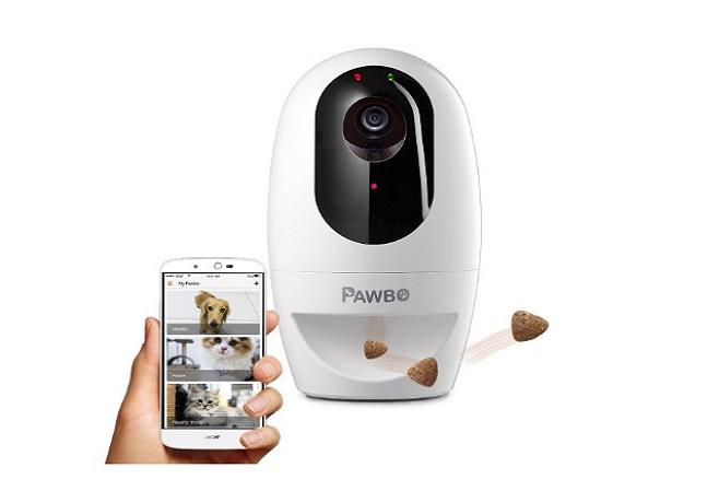 Pawbo Cat Camera