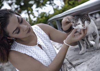 Top 10 Best Cat Camera Collar Reviews 2019