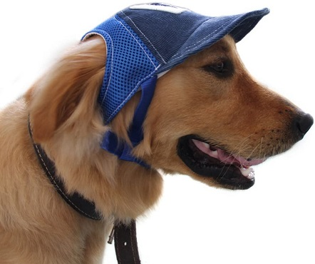 Pet Dog Baseball Cap Sport Cap Hat